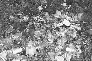 Поделки из мусора