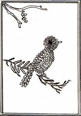 Поделки из арбузных семян - Птичка