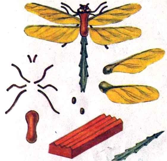 поделки из семян клена.