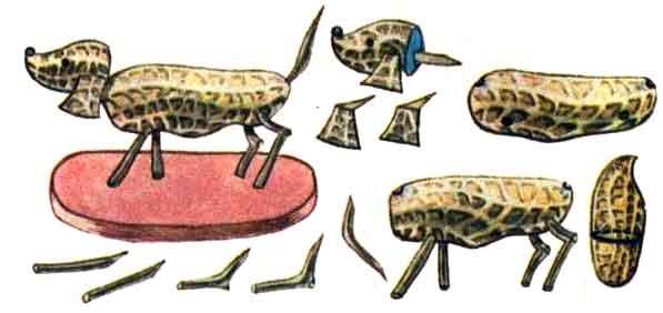 Поделки из земляного ореха - Собачка