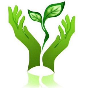 Методы и формы работы в ДОУ по экологическому воспитанию дошкольников