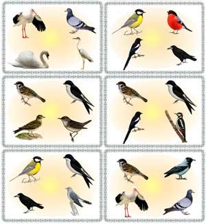 НОД по развитию речи: «Весна. Перелетные птицы»