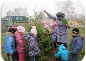 «Познавательно-исследовательская деятельность как метод экологического воспитания дошкольников»