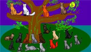 Интегрированное занятие в старшей группе детского сада «SOS с острова кошек»