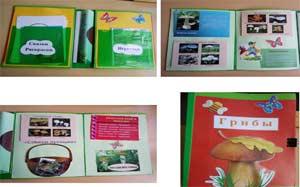 Статья «Лэпбук – занимательная форма организации деятельности детей»