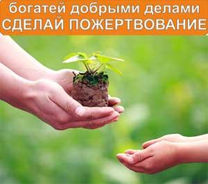 Пожертвования