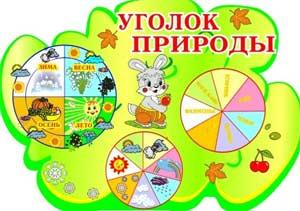 Воспитательная работа с детьми, в процессе организации трудовых поручений, в уголке природы (из опыта работы средней группы).