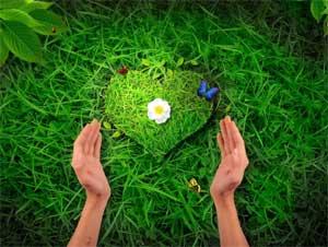 Конспект экологической викторины «Природа – наш друг»