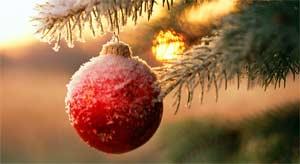 Сценарий новогоднего праздника младшей ясельной группы ВОЛШЕБНЫЙ КОЛОКОЛЬЧИК