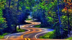 Проект «Безопасность на дорогах»