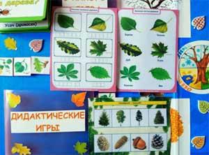 Учебно-методическое пособие Лэпбук «Деревья нашего края»