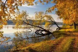 Проект «Осень – чудная пора»