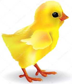 Конспект коррекционного занятия в логопедической подготовительной к школе группе «Цыпленок Цып»