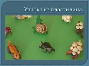 Пластилиновая жизнь. Поделка из пластилина «Черепашка»