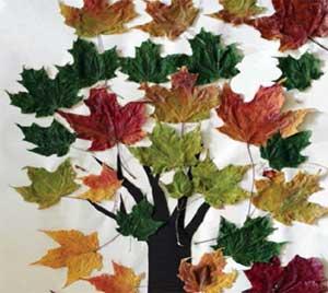 Конспект НОД для младшей группы Осенние листья