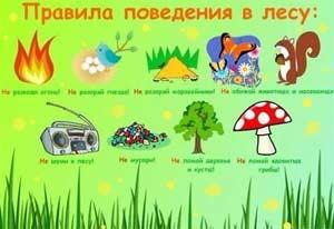 Педагогический проект на тему: «Безопасность детей в природе»
