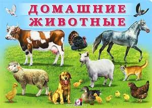Конспект логопедического занятия с использованием ИКТ для детей 5-6 лет с ОНР «Домашние животные»
