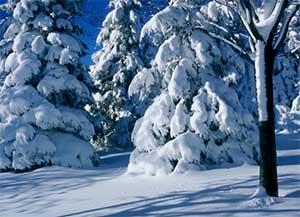 Конспект НОД итогового мероприятия с детьми второй младшей группы «Выпал первый снег».