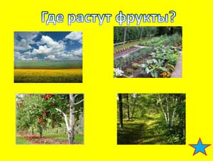 Презентация ВИКТОРИНА ПРО ФРУКТЫ