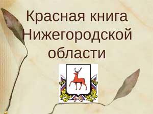Проект «Красная книга Нижегородской области»