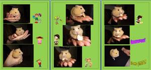 Презентация о кошке и мышке