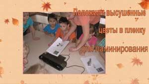 Творческая работа с детьми старшего возраста Изготовление гербария