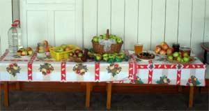 Сценарий праздника в детском саду «Пришёл Спас – яблочки припас»