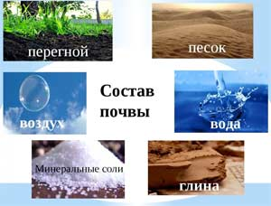Комплексно — тематическое планирование в старшей группе по ФГОС Тема недели: «В мире все так интересно!» (экскурсии, наблюдения, экспериментирования с природными объектами (воздух, песок, вода), экспериментирование с предметами).