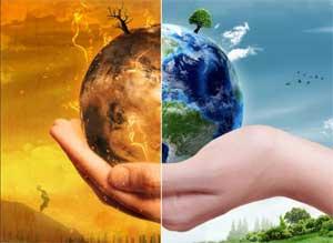 Творческий план средней группы №4 «Теремок» «Проектная деятельность по экологии»