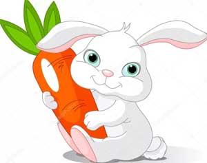 Конспект НОД по ФЭМП в средней группе «Угостим зайчика морковкой»