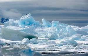 Экологическое занятие (подготовительная группа) «В гости в царство льда и снега»