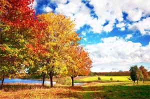Конспект открытого бинарного занятия для родителей в подготовительной группе по развитию речи: «Путешествие в царство Осени»