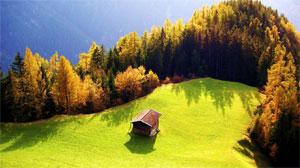 Сценарий развлечения для детей младшей группы «Осенняя полянка»