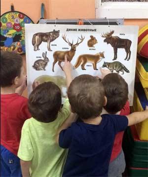 Использование наглядных пособий в экологическом образовании детей дошкольного возраста