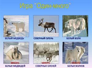 Конспект занятия и презентация на тему: «Дикие животные севера»