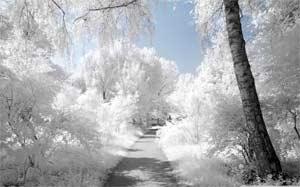 Конспект интегрированного занятия по развитию речи на тему «Зима белоснежная»
